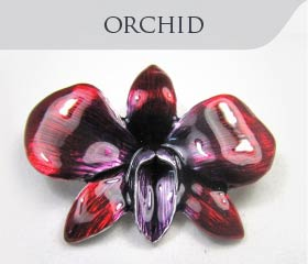 collection-category-orchid