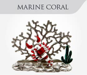 collection-sea-marine-coral