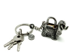 kl053-06-padlock-with-key-hanging-cocker-2x4x3-5-cm